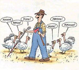 Fool the farmer? Never!