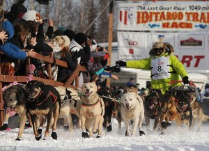 Newton Marhall, Iditarod musher
