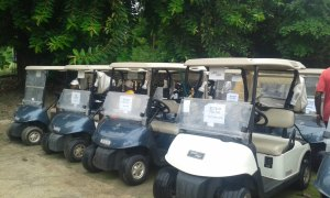 Golf carts are among the heavy investment needed in the sport, and needs paying customers