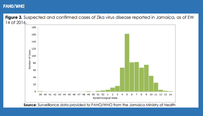 350 Words Or Less: Where Are  We With #Zika Outbreak in#Jamaica?